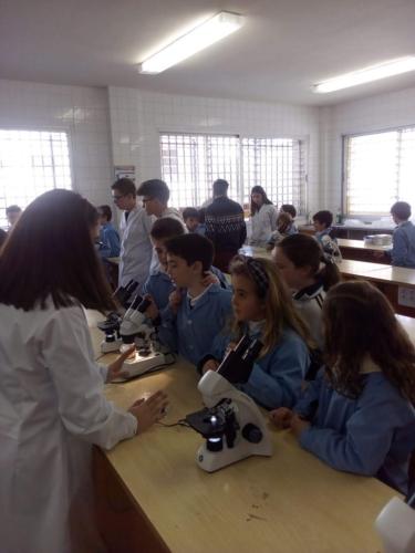 4° Ed. Primaria visita nuestro laboratorio